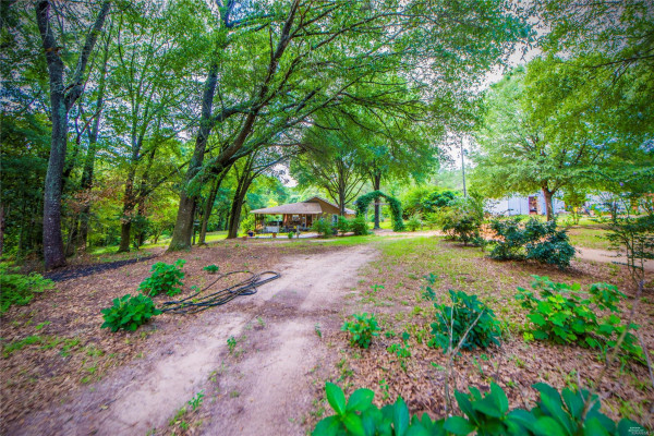 10135  County Road 59 Road S